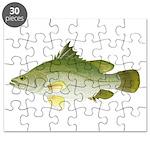Nile Perch Puzzle