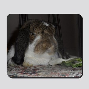 Giant French Lop Mousepad