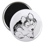 Huskie pup Magnet