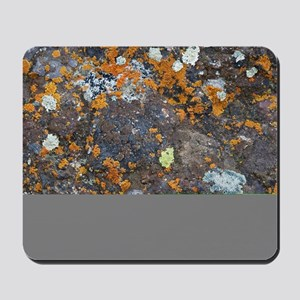 Lichen and Rock Mousepad