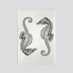 Vintage Seahorses in Woodcut style Magnets