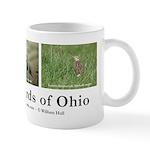 Ohio Grassland Birds Mug (white)