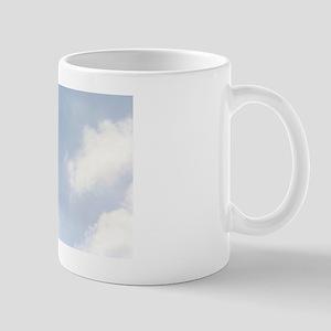 Skydive3 Mug