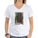 General Sherman Sequoia with Girls Women's V-Neck