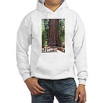 General Sherman Sequoia with Girls Hooded Sweatshi