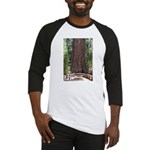 General Sherman Sequoia with Girls Baseball Jersey