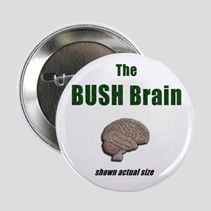 Bush Brain pinback Button