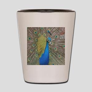 Peacock pillow Shot Glass