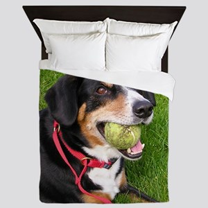 entlebucher mountain dog w ball Queen Duvet