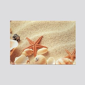 Seashells Magnets