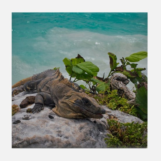 Mexico Iguana Tile Coaster