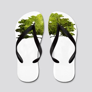 Mandolin Tree Flip Flops