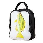 Bluestripe Snapper c Neoprene Lunch Bag