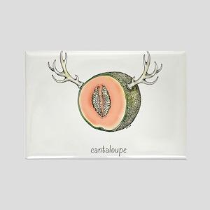 Cantaloupe Magnets