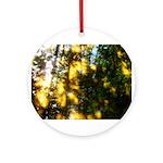 Light messengers Ornament (Round)