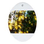 Light messengers Ornament (Oval)
