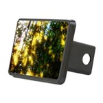 Light messengers Hitch Cover