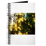 Light messengers Journal