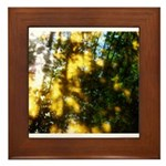 Light messengers Framed Tile