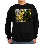 Light messengers Sweatshirt