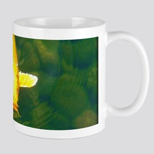 golden carp Mugs