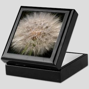 Gone to Seed Keepsake Box