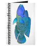 Humphead Wrasse Journal