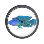 Humphead Wrasse Wall Clock