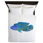 Humphead Wrasse Queen Duvet