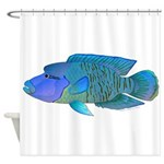 Humphead Wrasse Shower Curtain