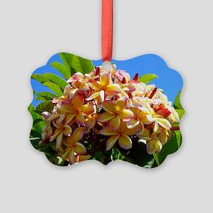 Frangipani Picture Ornament