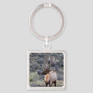 bull elk Square Keychain