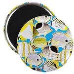 ButterflyfishPattern1 Magnets