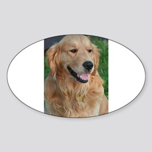 golden retriever 10 Sticker
