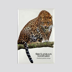 Sri Lankan Leopard Rectangle Magnet