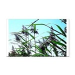 Hay in the summer Rectangle Car Magnet