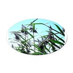 Hay in the summer Oval Car Magnet