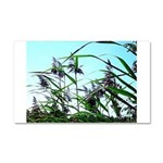Hay in the summer Car Magnet 20 x 12