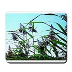 Hay in the summer Mousepad