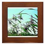 Hay in the summer Framed Tile