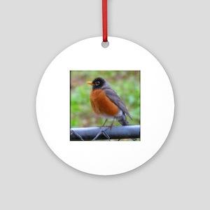 Fluffy Robin Round Ornament