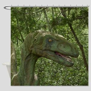 Dinosaur 3736 Shower Curtain