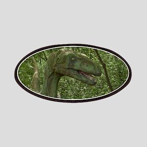 Dinosaur 3736 Patches