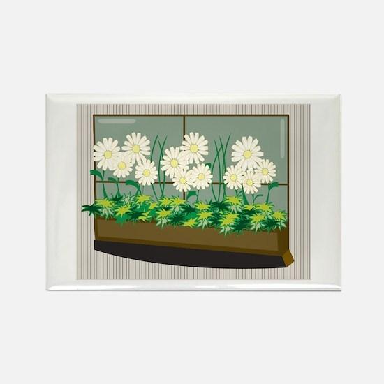 Window Planter Magnets
