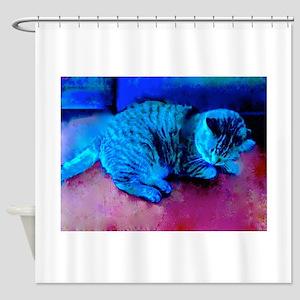 Cat Nap Shower Curtain