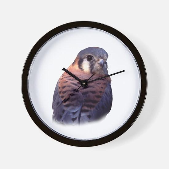 kestrel, falcon Wall Clock