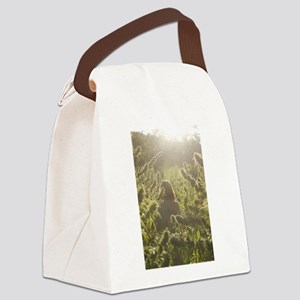 CANNA GARDEN Canvas Lunch Bag