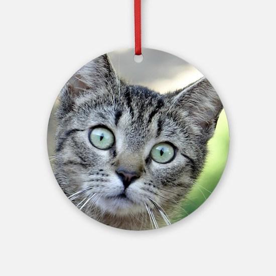 Cute Friendship symbol Round Ornament