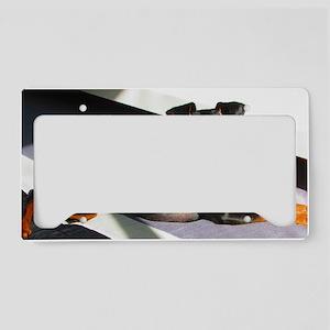 Min Pin License Plate Holder