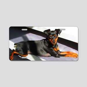 Min Pin Aluminum License Plate